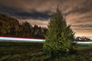 Douglas Graham/Loudoun Now Cars zoom past the new Leesburg Rt. 7 Christmas tree heading east. The tree now sits on the east bound off-ramp of Rt. 7 and Market Street. Construction crews unceremoniously removed the old tree that had been decorated for the past 40 years in the median as part of the highway widening project now underway.