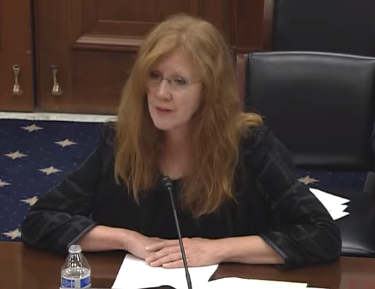 Anne Crossman addresses the House Committee on Small Business during a Nov. 18 hearing.