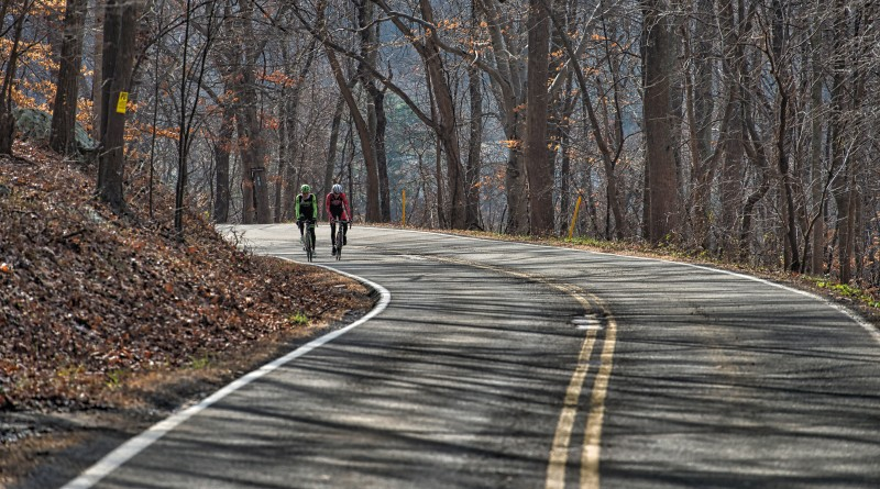 Pro cyclist Justin Mauch and Joe Dombrowski ride across Mt. Weather in the Blue Ridge Mountains.  (Photo By Douglas Graham/WLP)