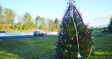 Rt. 7 Christmas Tree