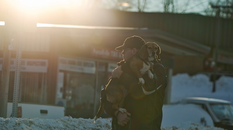A man carries his dog down the street because sidewalks where impassable in Purcellville after a two-day blizzard hit the Mid Atlantic with Loudoun County right in the bullseye of the worst part of the storm. (Photo by Douglas Graham/Loudoun Now)