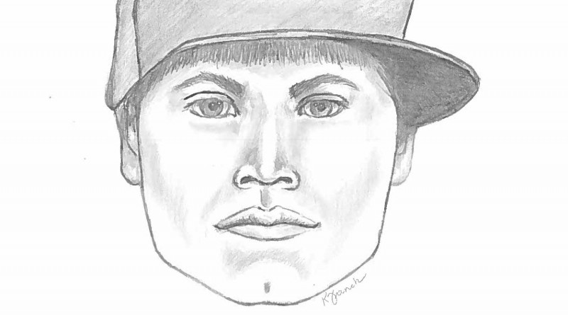 The Loudoun County Sheriff's Office is seeking two men in connection with an assault of a South Riding student Feb. 4.