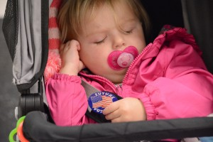 Ella Rutherford, a future voter, waits at the polls. (Renss Greene/Loudoun Now)