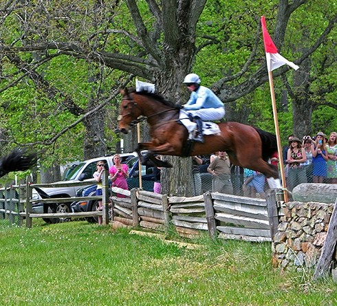 Oatlands Point to Point