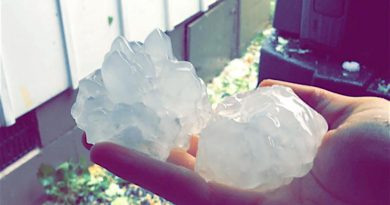 Large hailstones fell in Middleburg during Thursday night's storm.