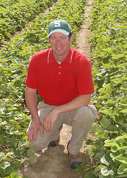 Tyler Wegmeyer in the strawberry patch. (Virginia Cooperative Extension News)