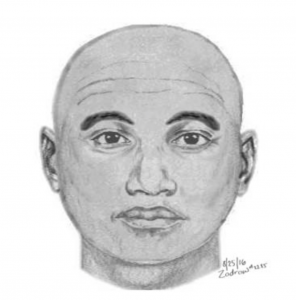 The Leesburg Police Department has released a sketch of the suspect in this morning's attempted assault of a jogger on the W&OD Trail.