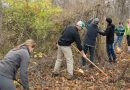 Stewardship Day Planned at Blue Ridge Regional Park
