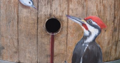 Penny Hauffe's Woodpecker Wine Tasting (A Hint of Oak) was the top seller during Saturday's auction of Purcellville's painted wine barrels, with a winning bid of $4,000.
