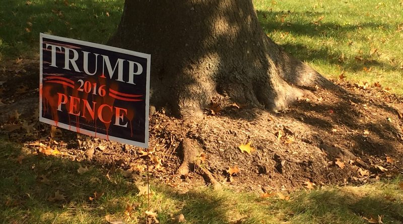 Vandals in the Leesburg's Woodlea Manor neighborhood spayed unit-Trump graffiti on sidewalks and driveways.