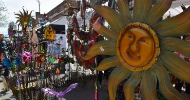 Video: A Visit to the Leesburg Flower and Garden Festival