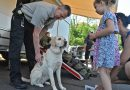 PHOTO GALLERY: Public Safety Day in Purcellville