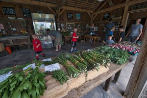 There is plenty of opportunity to buy fresh, local produce and other goods in Loudoun, with 10 local farmers markets, from as far west as Purcellville to as far east as Sterling. [Douglas Graham/Loudoun Now]