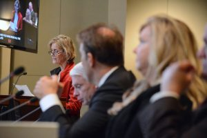 Julie Diehl speaks in opposition to the Catesby Farm application as the LaRoses listen. (Renss Greene/Loudoun Now)