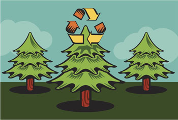 Christmas Tree Recycle.Loudoun County Offers Christmas Tree Recycling Loudoun Now