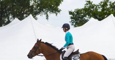 Photo Gallery: Upperville Colt & Horse Show
