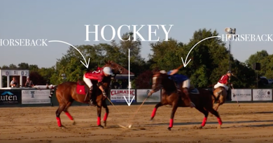 Video: Polo in the Park